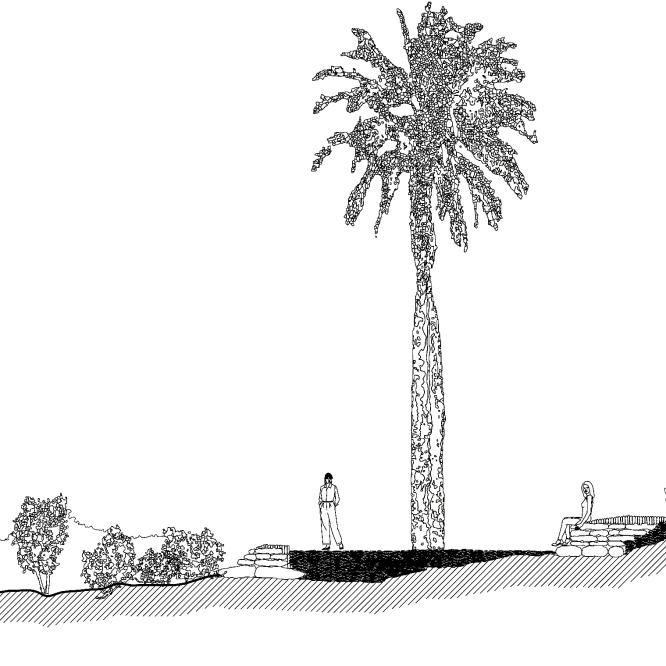 seccion-palmar-de-ocoa