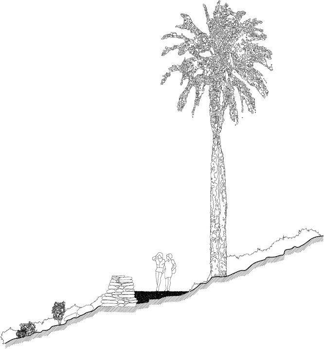 seccion-palmar-de-ocoa2
